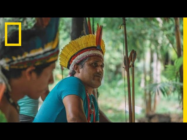 Can Cell Phones Help Save Rain Forests? This Tribe Thinks So | Short Film Showcase