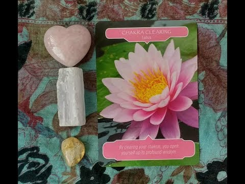 Daily Oracle Card Reading 22nd May Chakra clearing lotus flower therapy tarot all signs