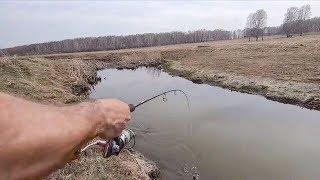 ДАЖЕ не ждали ТАКИХ  ПОКЛЕВОК  в ЛУЖЕ. Рыбалка весной на малой речке..