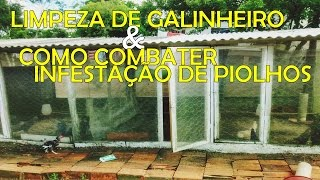 COMO ACABAR COM INFESTAÇÃO DE PIOLHOS NA CRIAÇÃO  E COMO FAZER LIMPEZA DO GALINHEIRO - DICAS
