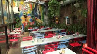 The real jungle restaurant - Urban Gardener video