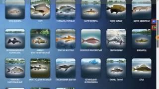 Трофейная рыбалка Путеводитель по игре(в этом видео вы узнаете как пользоваться Путеводителем по игре Трофейная рыбалка., 2017-01-16T07:53:51.000Z)