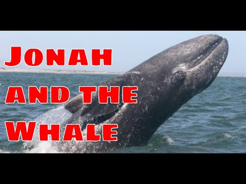 Science Confirms Jonah And The Whale Story - Bible Is Accurate!