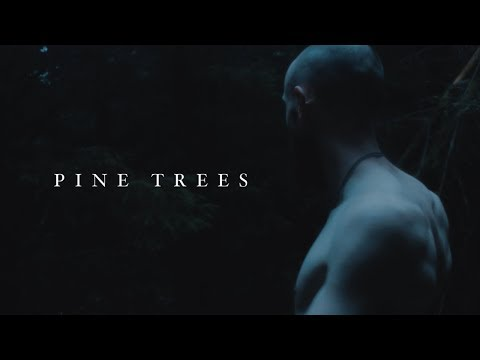 Lawriii Craic - Pine Trees ( Official Video )