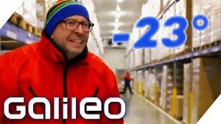 Extreme Jobs im Tiefkühllager - Galileo testet den kältesten Beruf! | Galileo | ProSieben