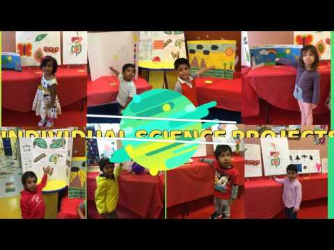 Science Fair at Franklin Montessori School of New Jersey