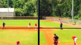 D'Artagnan's 2015 Baseball Highlights