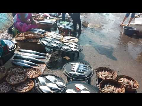 Harnai beach fish market
