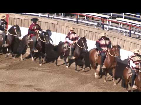 Rodeo San Fernando - Febrero 05/2017