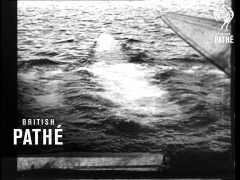Ships And Submarines (1914-1918)