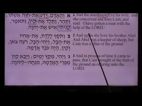 히브리어 성경연구 창040109