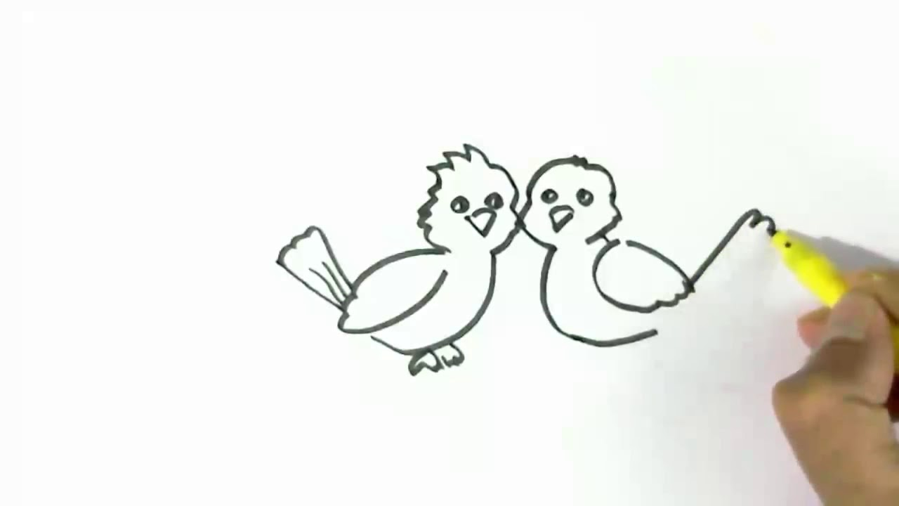 Copy Of How To Draw Love Birds Easy Steps For Children Beginners