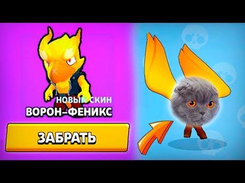 БАРСИК-ФЕНИКС САМЫЙ ОПАСНЫЙ