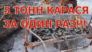Поймано 5 тонн карася в Ишимском районе Тюменской области промышленным способом