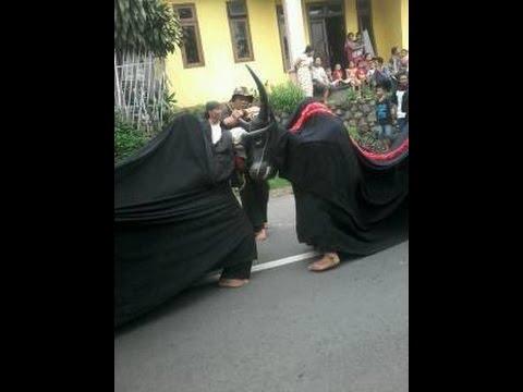 Turonggo Seto Kinasih-Bantheng Massal Live Mbringin
