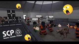 Crazy Team Work ( Violation de confinement SCP de ROBLOX Minitoon