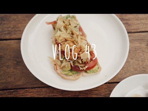 Organic food in San Diego | VLOG 43