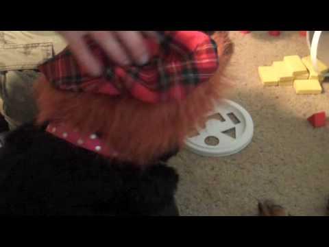 Lady Elaine as a Scottish Lassie