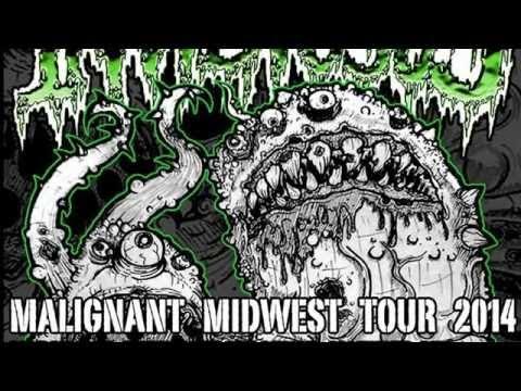 INVIDIOSUS MALIGNANT MIDWEST TOUR PT. 2