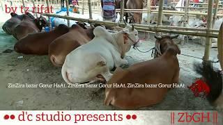 001 | Eid ul Azha 2018 | Bulls Of Rahmatgonj Haat | Old Dhaka Special | ZbGH 2018