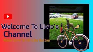 Livio Playing with Dog! How🤔?