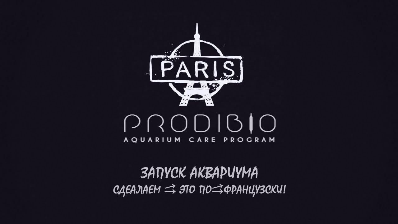 Запуск аквариума сделаем - это по-французски с Prodibio`em all