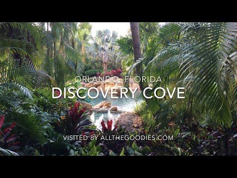 Discovery Cove, Orlando 4K