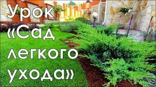 Смотреть онлайн обзор по направлению Сад легкого ухода | Курсы ландшафтного дизайна в Новосибирске | GARDEN BOOM