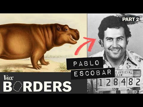 The Woody Show - How this drug lord created a hippo problem in Colombia