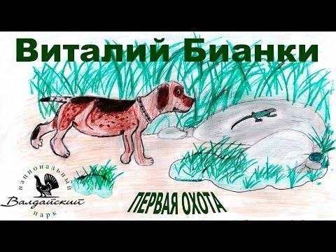 Синичкин календарь читать сказку онлайн Бианки Виталий