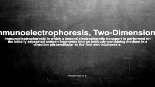 Medical vocabulary: What does Immunoelectrophoresis, Two-Dimensional mean