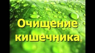 Очищение кишечника при помощи растительных пектинов ( свекла, тыква, яблоки)