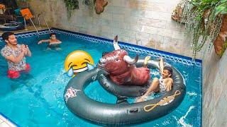 فعاليات في المسبح - تحدي الثور😂