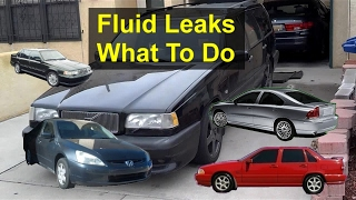 My take on fluid leaks... how bad is it leaking...what about a quick fix? - QOTW