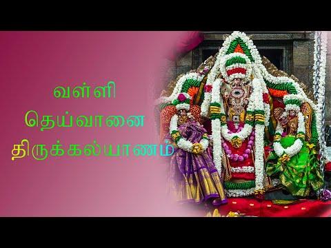 வள்ளி-தெய்வானைதிருக்கல்யாணம்--கண்டி-ஶ்ரீ-செல்வ-விநாயகர்-திருக்கோவில்