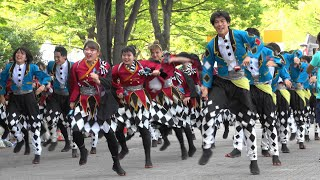 "The yosakoi dance team Hyakumonogatari at Harajuku Omotesando Super Yosakoi 2019, on the street in front of NHK. A dance number ""The girl who never ..."