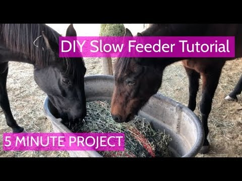 DIY Horse Slow Feeder Tutorial