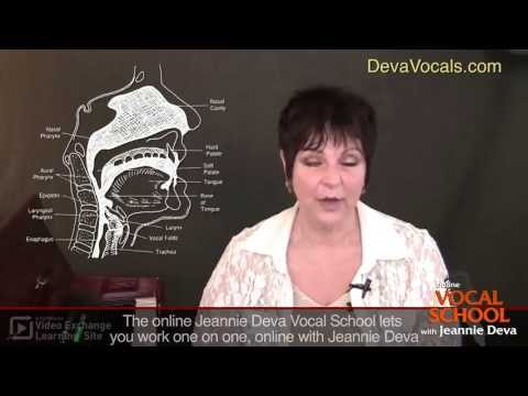 How To Sing Better: Singing Vowels and Consonants