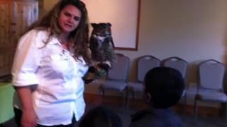 Biggest owl