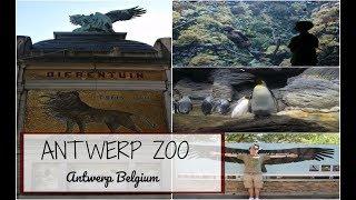 Antwerp Zoo | Antwerp Belgium