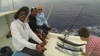 WAHOO Рыбалка на Мальдивах - Fishing in Maldives Addu Atoll(Рыболовный тур на юге Мальдивы, Атолл Адду. Мы поймали 4 Wahoo. Если бы его на ужин на курорте курорт Shangri-La., 2014-03-28T20:20:30.000Z)