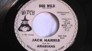 Jack Harris & The Arabians - 45 rpm Record - Dog Wild - Howling R&B Video