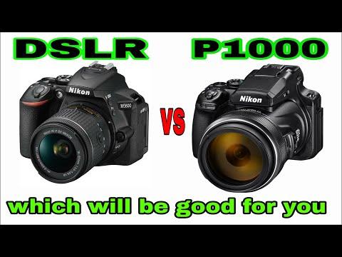 Nikon P1000 Vs DSLR Camera Comparison