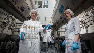 Корреспонденты «Подмосковье сегодня» проследили сложный путь мясо-молочной продукции(, 2016-06-14T10:09:51.000Z)