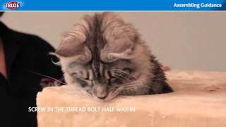 How to Assemble a Trixie Cat Tower - Healthy Cats Mart