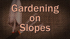 Gardening on Slopes – Family Plot
