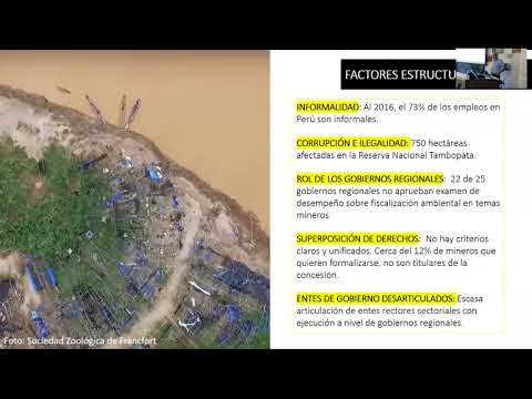 Formalization of Alluvial Gold Mining in Peruvian Amazon 10.5.2017