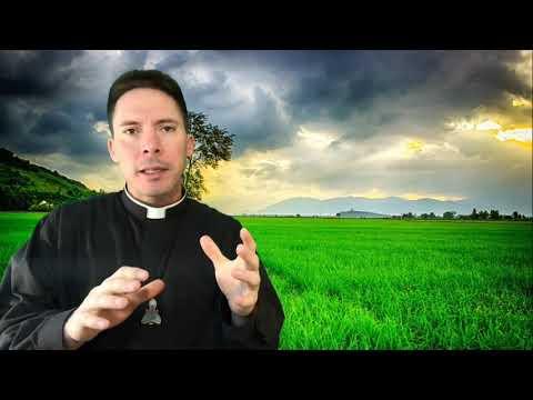 Depressed? Veni Sancte Spiritus! - Fr. Mark Goring, CC