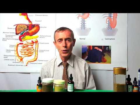 Панкреатит: симптомы и лечение, диета при панкреатите