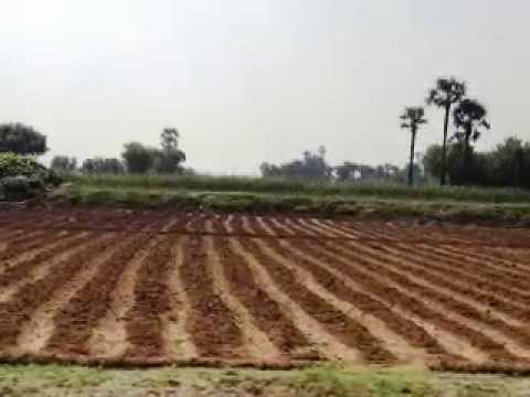 sale of rural agricultural land Ettayapuram Call 9677950020